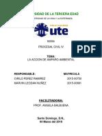 LA ACCIÓN DE AMPARO AMBIENTAL.docx