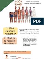 Introduccion a La Anatomia -3ro de primaria
