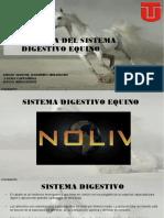 EXAMEN DEL APARATO DIGESTIVO.pdf