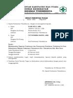 SPPD Toga Desa Silimabanua.docx