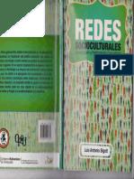 Bigott-Redes-Socioculturales.pdf