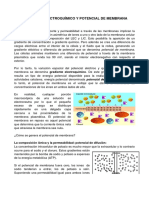 membrana_potencial_clase.pdf