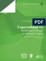 Especialidad en Medicina y Cirugía en Perros y Gatos UAEMEx