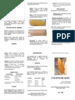 triptico de maíz.docx