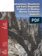 1994_Sedimentary Structures_Demicco & Hardie.pdf