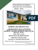 Perfil de Salud.pdf