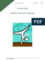 documento de apoio (ginástica de solo)