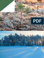 nordic-paper_corporate_broschure_2016.pdf