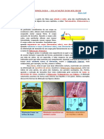 1dilataçao.pdf
