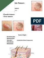 Skin Tumor Elderly