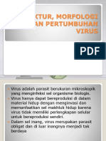 (Bu Qori) Struktur, Morfologi Dan Prtumbuhan Virus