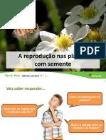Reprodução de Plantas Com Semente