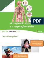 Respiração Externa e Respiração Celular