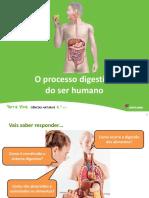 Sistema Digestivo Ser Humano