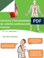U7 Estrutura Funcionamento Sistema Cardiovascular Humano Final