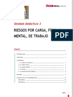Carga Fisica y Carga Mental Resumen