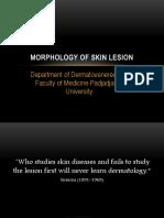 Mini lecture Morphology of Skin Lesion.pptx