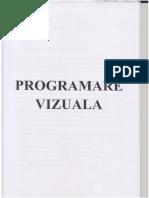 programare vizuala.pdf