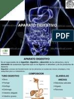 Clase 13. Aparato digestivo.pdf