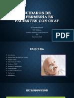 Cuidados de Enfermería en Pacientes Con CNAF