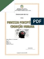 CAPA E CONTRA CAPA.docx
