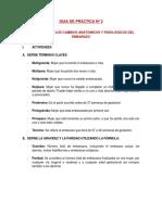 GUIA DE PRACTICA Nº 2.docx