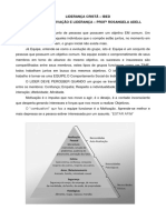 LIDERANÇA AULA 3 RESUMO GRUPO.docx