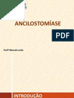 Ancilostomíase (2)