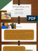 Rol Del Kinesiólogo en La Educación