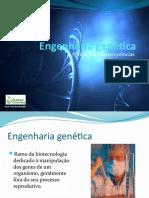 eng.genetica