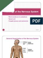 Histology of the Nervous System (2).pdf