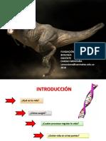 Clase magistral biologia.pdf