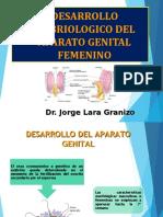 5. 2. Desarrollo embriologico del AGenital-1.ppt