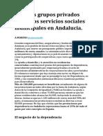 Grandes Grupos Privados Copan Los Servicios Sociales Municipales en Andalucía