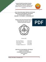 Laporan_Praktik_Kerja_Profesi_Apoteker_K.pdf