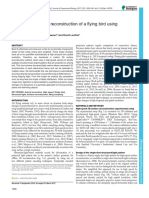 1510351312_2017 reconstruction deetjen.pdf