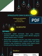 MUZDALIFA MOHAMAD Spingolipid Dan Glikolipid