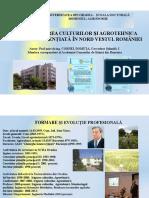 Prezentare Teza de abilitare Domuta C 2016.pdf