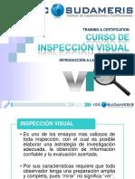 Inspeccion Visual Modulo 1