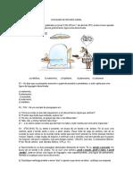 REVISÃO 3º BIMESTRE.docx