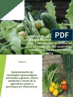 Proyecto Agricultura Urbana y Periurbana