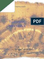 tipos-cel-neurona.pdf