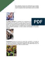 Actitud La Real Academia Española Menciona Tres Definiciones de La Palabra Actitud