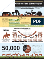Wildhorse 2019infographic 2.27.19