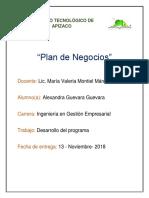 Desarrollo del programa de Plan de Negocios.pdf