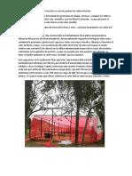 Hidroponia malla sombra rojo en invernadero por investigar y consultar.docx