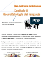 Neurofisiología del lenguaje.pptx
