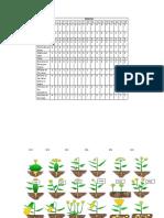 cladograma.docx