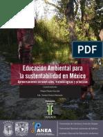 EA Sustentabilidad Mexico.pdf