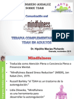 Mindfulness Terapia Complementaria TDAH Adulto
